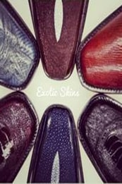 Exotic Shoes