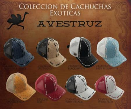 Different-Colors-Ostrich-Baseball-Caps-18713.jpg