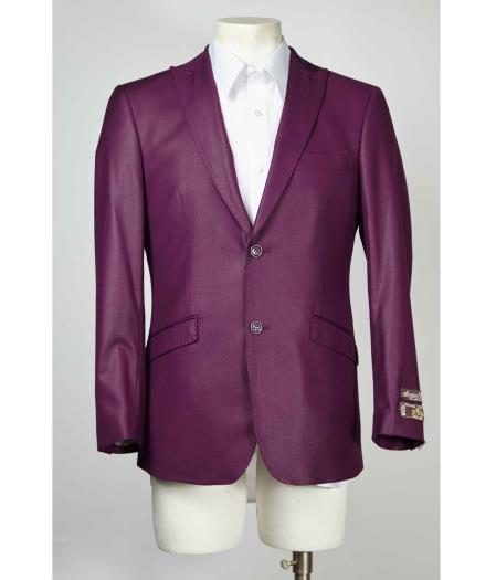 Mens-Purple-2-Button-Blazer-26850.jpg