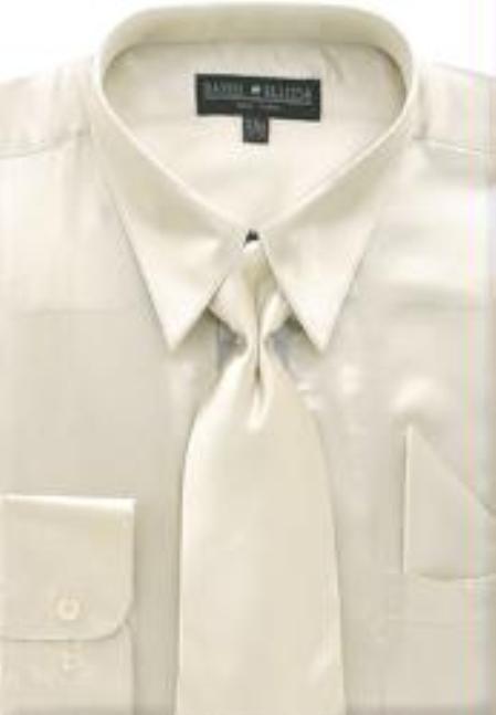 Shiny-Beige-Color-Shirt-Tie-4541.jpg