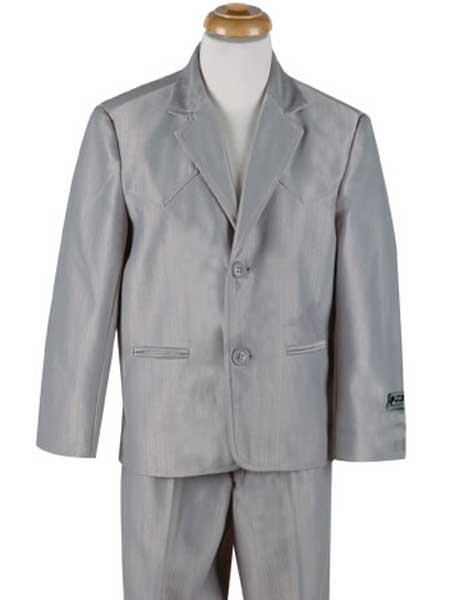 Shiny-Grey-Two-Buttons-Suit-27453.jpg