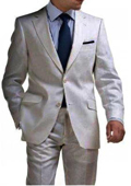 Light Gray 2 Button Tapered Suit