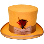 Elegant Top Hat -