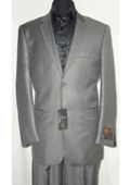 2 Button Silver Gray Suit