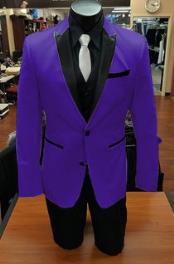 Alberto Nardoni Purple Color